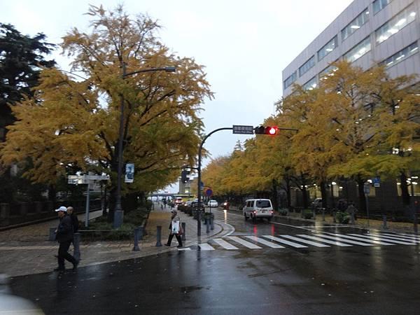 s橫濱8.JPG