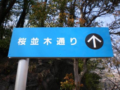 櫻並木指示牌