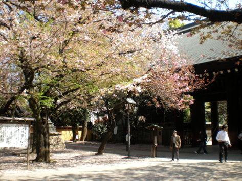 靖國神社9