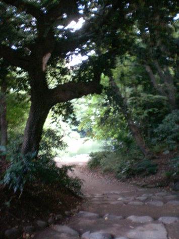 三四郎池入口