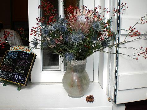 白窗前的花