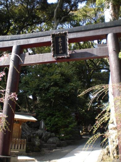 來宮神社鳥居.jpg