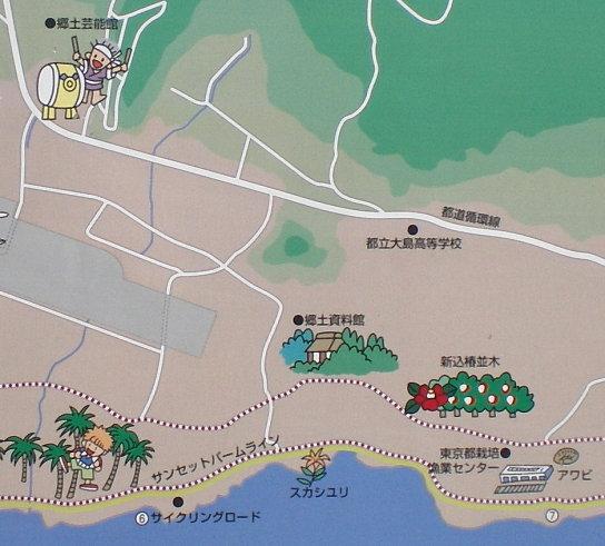 大島地圖中.jpg