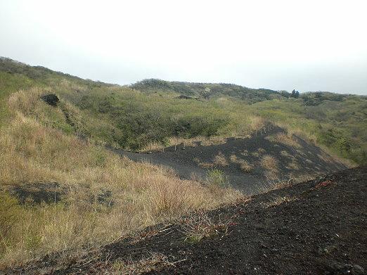 火山石.jpg