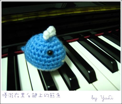 小鯨魚2.JPG