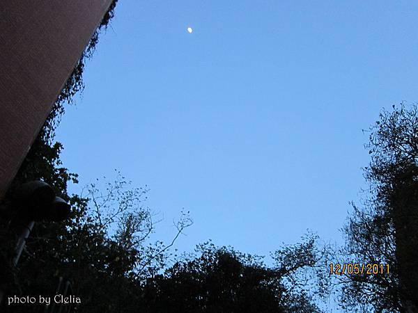 《寂寞月光》