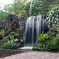 Singapore Botanic Garden_HR_21.JPG