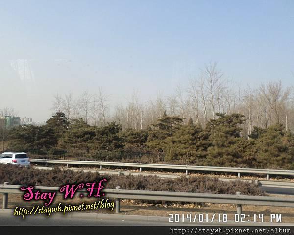 PhotoCap_SAM_7318.jpg