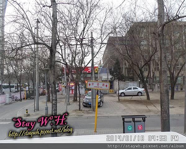 PhotoCap_SAM_7407.jpg