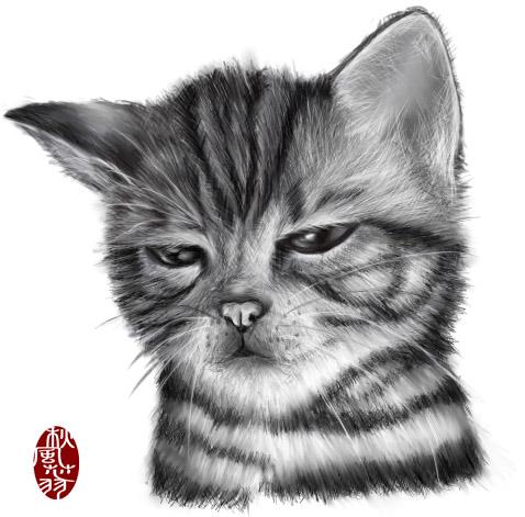貓咪素描.jpg