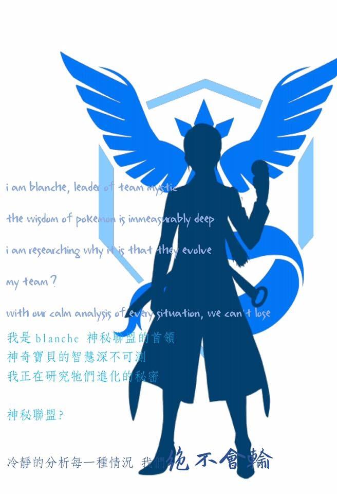 個人資料中文藍隊.jpg