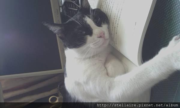 C360_2012-09-04-07-23-53