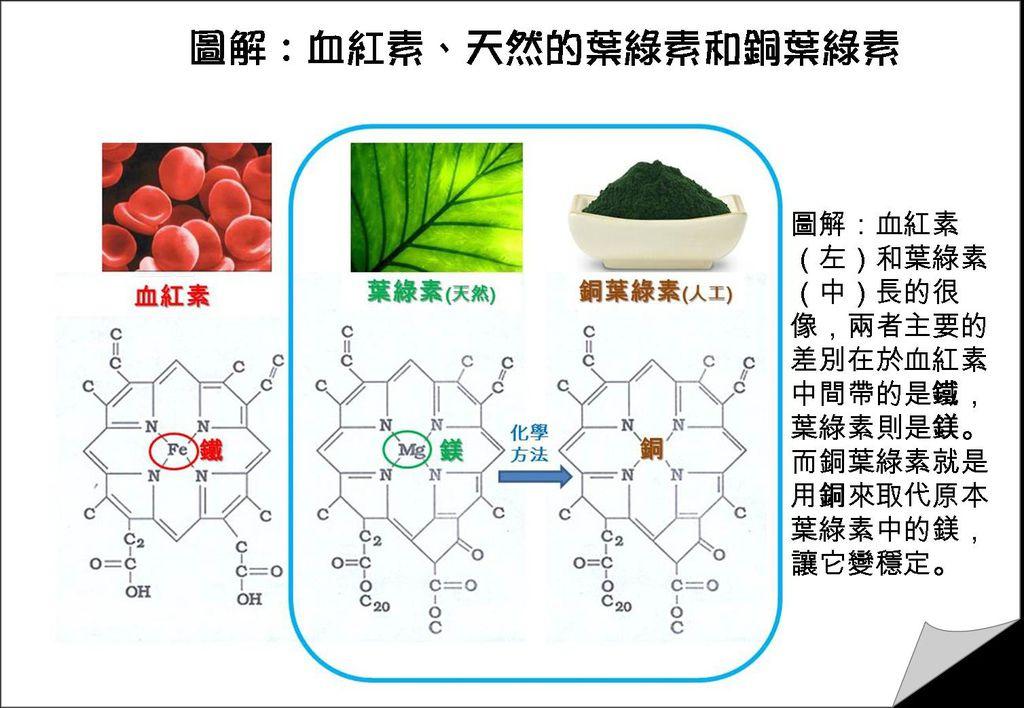 葉綠素和銅葉綠素