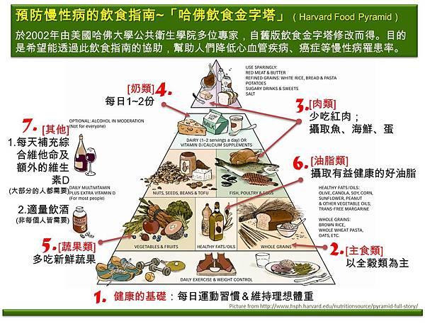 哈佛飲食金字塔