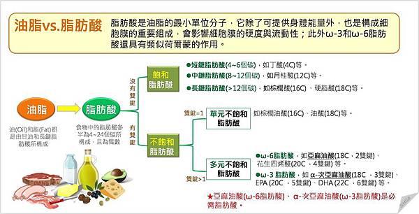 油脂和脂肪酸.jpg