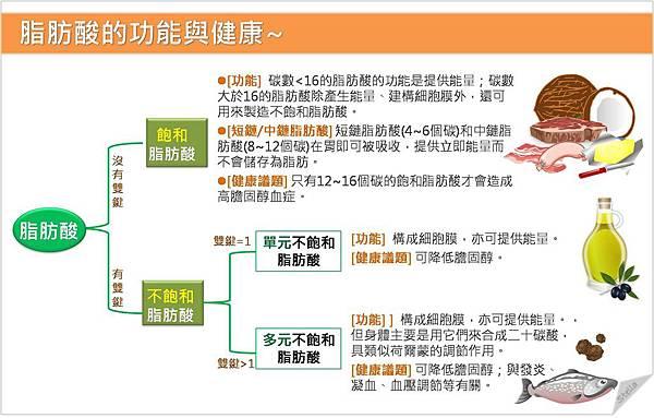 脂肪酸的功能與健康.jpg