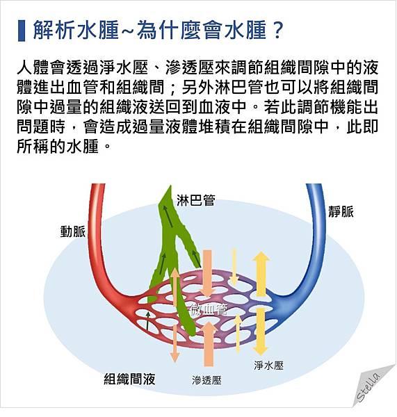 解析水腫~為什麼會水腫?.jpg