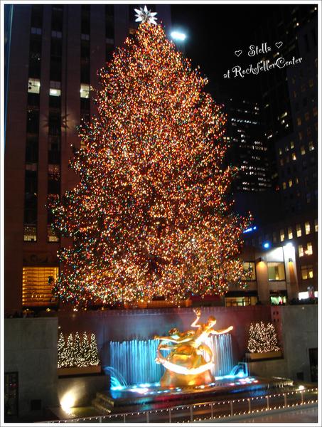 Rockefeller Center經典聖誕樹