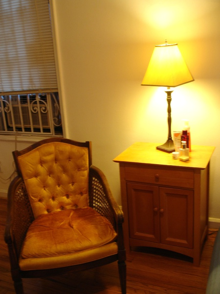 Forest HIlls小公寓的家具