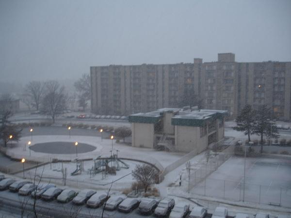 Jan. 26, 2011 傍晚下雪