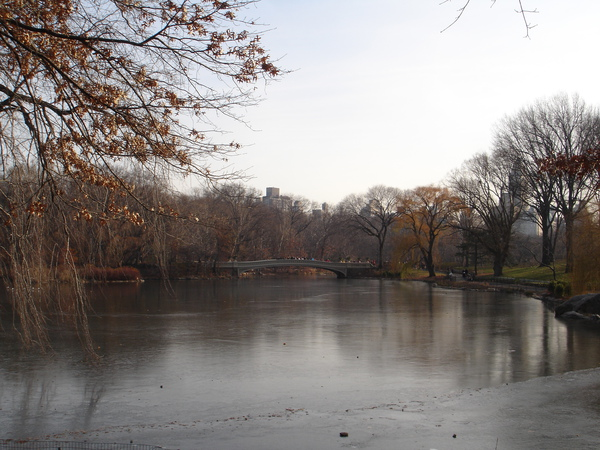 The Lake, Central Park, New York