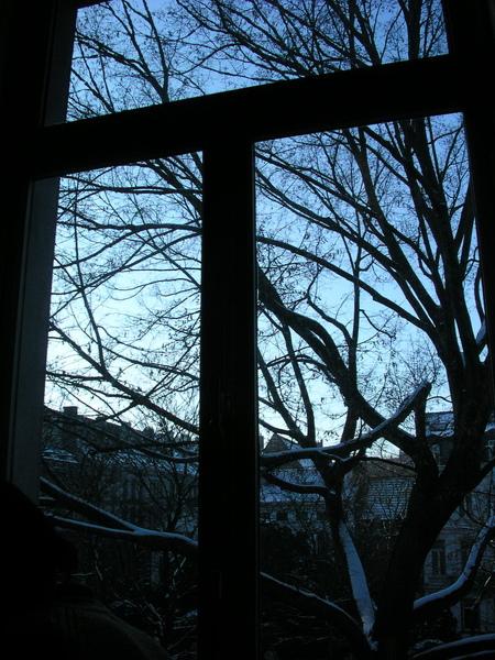 上課時,拍下窗外