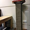 貓抓板重生6.jpg
