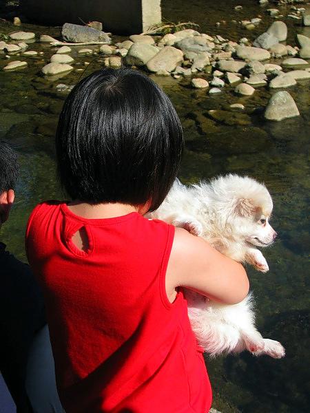 妹妹:小心狗狗呀