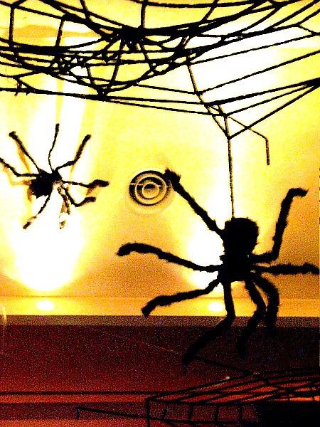 很多蜘蛛從天而降