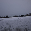 雪 (崩潰)