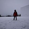 踩在雪上, 過沒三秒就掉下來了 XD