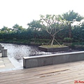 六樓涵天水漾池畔1