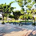 板橋體育場前公園3