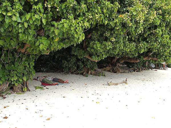 35.還有人直接躺在沙灘上睡覺.jpg