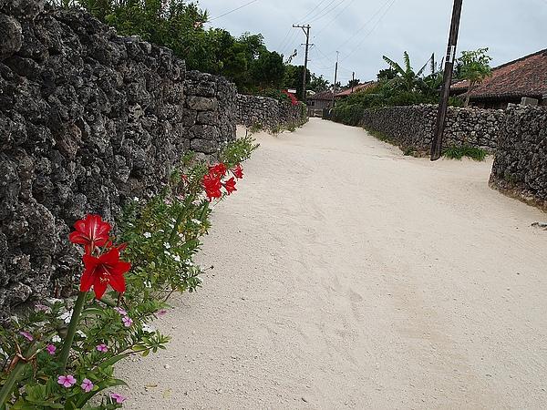 42.竹富島的街道,路上都是鋪海沙.jpg