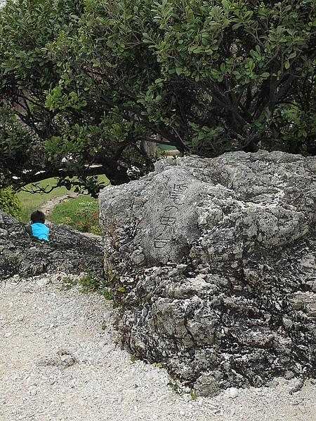 45.龜甲觀景台,因為最上面呈現是6角型的展望台.jpg