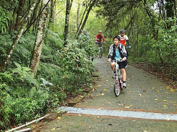 月潭自行車道大多是下坡,一下可以騎車