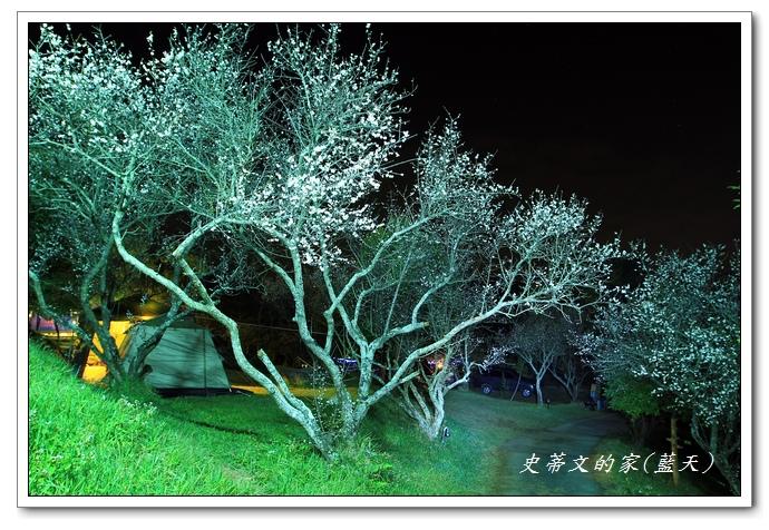 10-IMG_5389.jpg