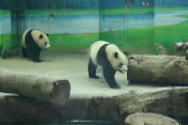 zoo 013.jpg