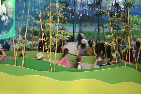 zoo 018.jpg