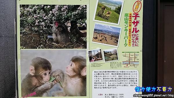20160531-03-4猴子園.jpg
