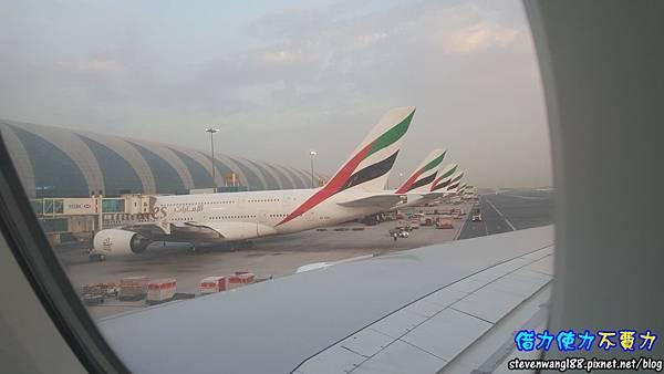 20170802-46-都是阿聯酋航空飛機.jpg