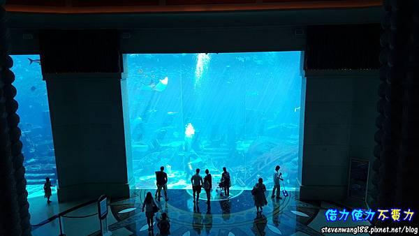 20170803-34-亞特蘭提斯世界最大水族箱.jpg