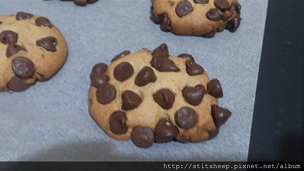 巧克力豆餅乾 (2)