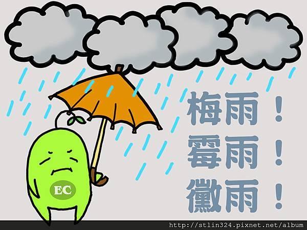 繪圖 - 梅雨.jpg