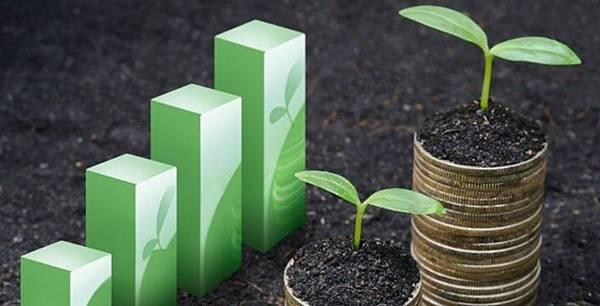 投資高殖利率股票,不如投資穩定發放現金股利與高填息股,年化報酬率穩勝定存3