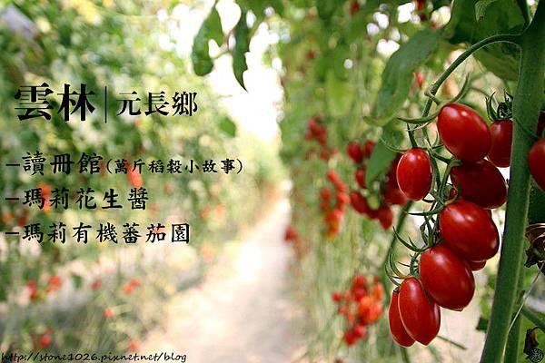 IMG_0266_副本1.jpg