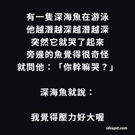 FB_IMG_1551623494422.jpg