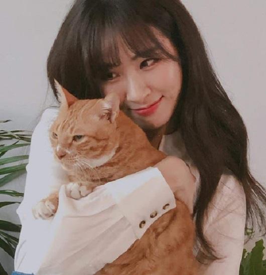 正妹抱黃貓.jpg