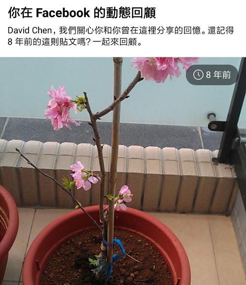老爺爺的開心花園 8.jpg
